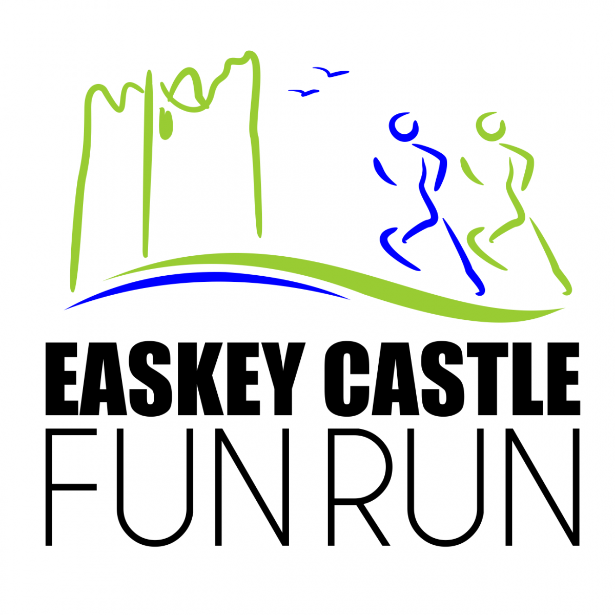 Easkey Castle logo2